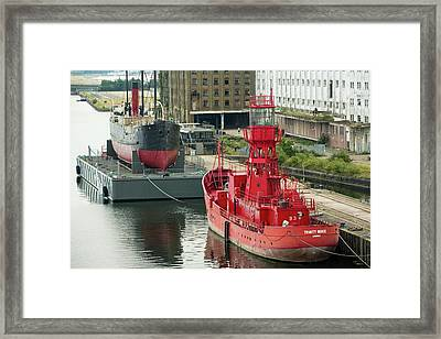 The Ss Robin Framed Print by Ashley Cooper