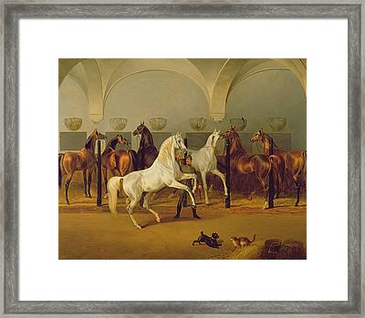 The Stables At Babolna Framed Print by Otto Stotz