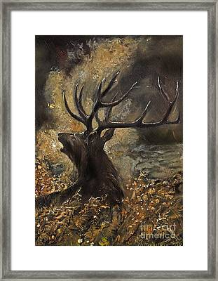 the Stag sitting in the grass oil painting Framed Print by Angel  Tarantella