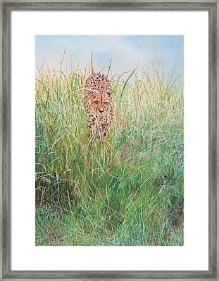 The Stalker Framed Print by John Hebb