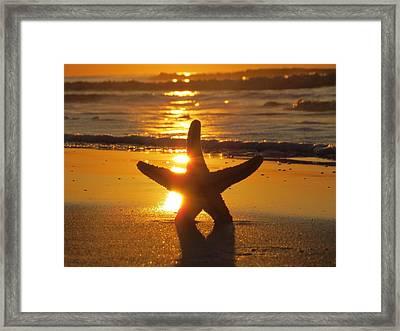 The Star Framed Print by Nikki McInnes