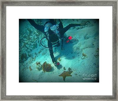 The Star Of The Scene Framed Print by Halifax Photography John Malone