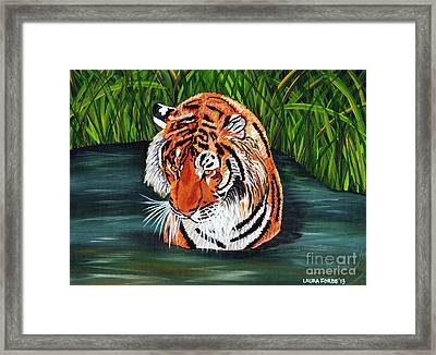 The Stare Framed Print by Laura Forde