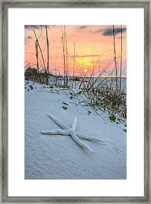 The Starfish On Orange Beach Framed Print