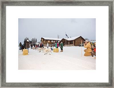 The Start Of A Sled Dog Race Framed Print