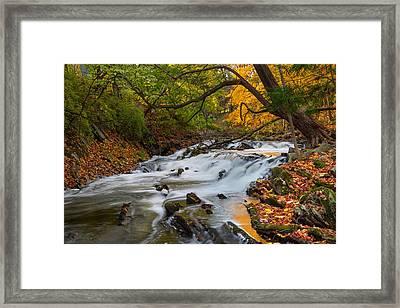 The Still River Framed Print by Bill Wakeley