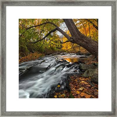 The Still River Square Framed Print by Bill Wakeley