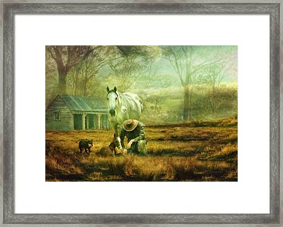 The Stock Horse Framed Print by Trudi Simmonds