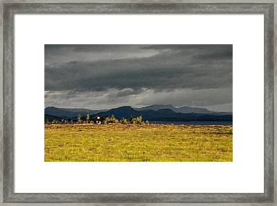 The Storm Is Coming Framed Print by Florian Rodarte