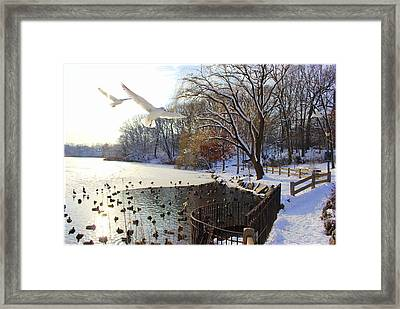 The End Of The Storm Framed Print