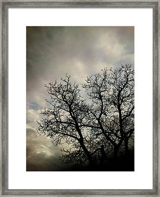 The Storm Framed Print by Lucy D