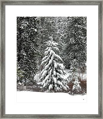 The Storm Subsides Framed Print by Will Borden