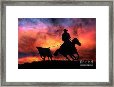 The Stray Framed Print by Stephanie Laird