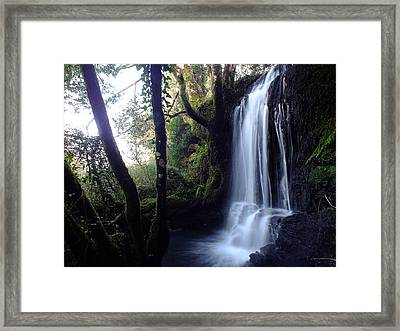 The Stream After Heavy Rain Framed Print