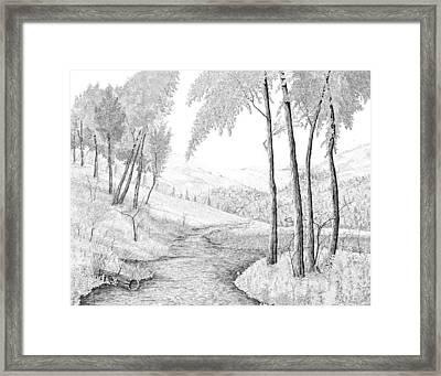 The Stream Framed Print by Carl Genovese