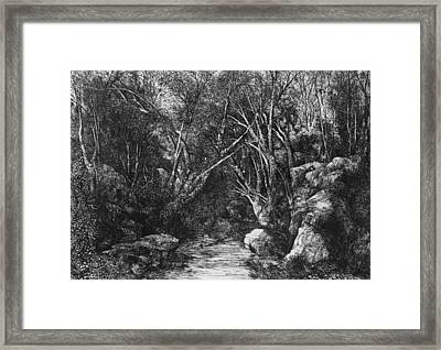 The Stream Through The Trees Framed Print