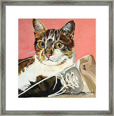 These Strings Are Attached Framed Print by Barbara Moak