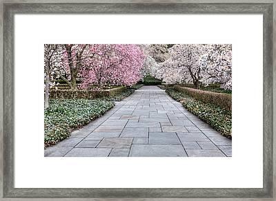 The Stroll Framed Print by JC Findley