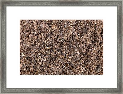 The Structure Of Peat-based Compost Framed Print