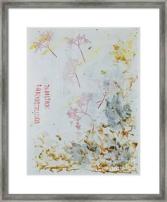 The Study Of Sambucus Nigra Framed Print by Belka Romashka