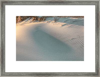 The Subtlety Of Shadow  Framed Print