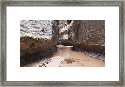 The Subway Framed Print