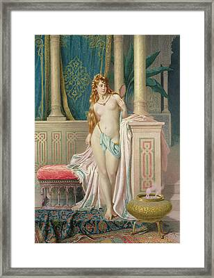 The Sultans Favorite Framed Print by Frederico Ballesio