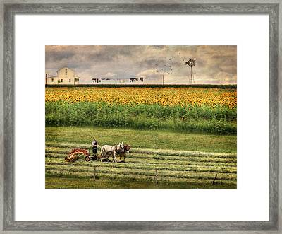 The Summer Cutting Framed Print