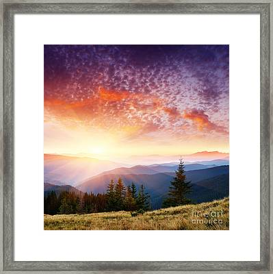The Summer Landscape Framed Print by Boon Mee