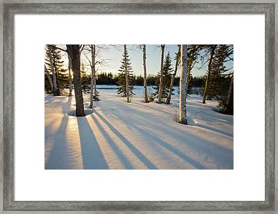 The Sun Goes Down Behind The Trees Framed Print by Jerry and Marcy Monkman