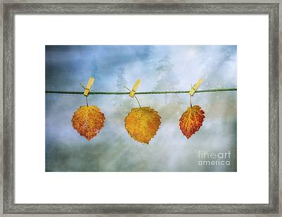 The Sun Shines Again Framed Print