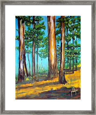 The Sun Slid Down The Ridge Framed Print