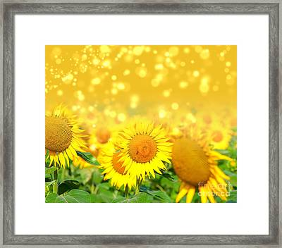 The Sunflowers Framed Print by Boon Mee