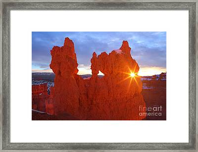 The Sunglasses Framed Print