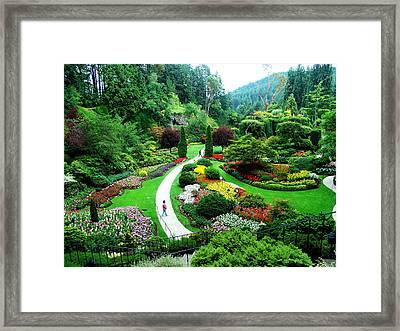 The Sunken Garden Framed Print by Janet Ashworth