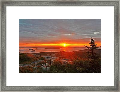 The Sunrise From Cadillac Mountain In Acadia National Park Framed Print