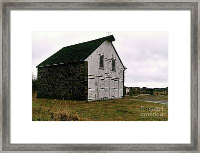 The Survivor New Hope Pa Framed Print by Michael Hoard