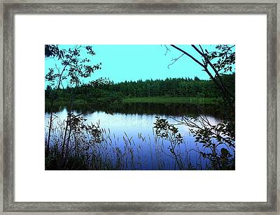 The  Swamp Framed Print by Jason Lees