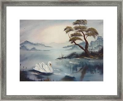 The Swan Framed Print by Samuel Jaycox
