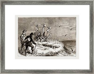 The Swedish Arctic Expedition A Samoiede Sacrificial Altar Framed Print by Litz Collection