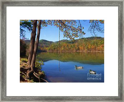 The Swimming Hole Framed Print by Lena Auxier