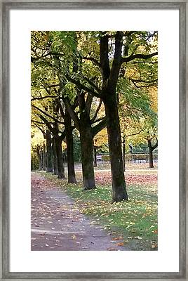 The Symbol Of Life And Hope Framed Print
