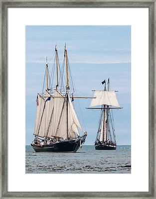 The Tall Ships Framed Print by Dale Kincaid