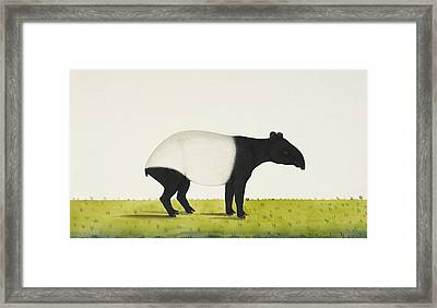 The Tapir Framed Print by Aged Pixel