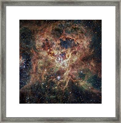 The Tarantula Nebula  Framed Print