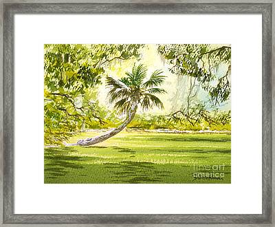The Tarzan Tree - Wakulla Springs State Park Framed Print by Bill Holkham