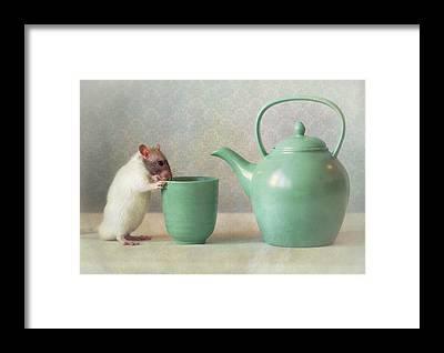 Teapot Framed Prints