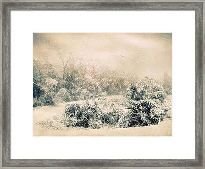 The Tempest Framed Print by Jessica Jenney
