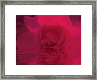 The Temple Rose Framed Print