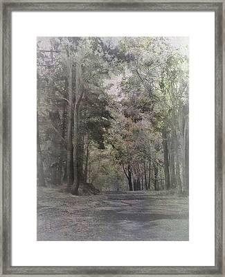 Framed Print featuring the photograph The Terrace by Elaine Teague
